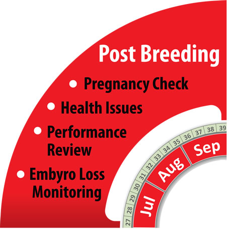 Monitoring Herd Post-Breeding Period with HerdInsights