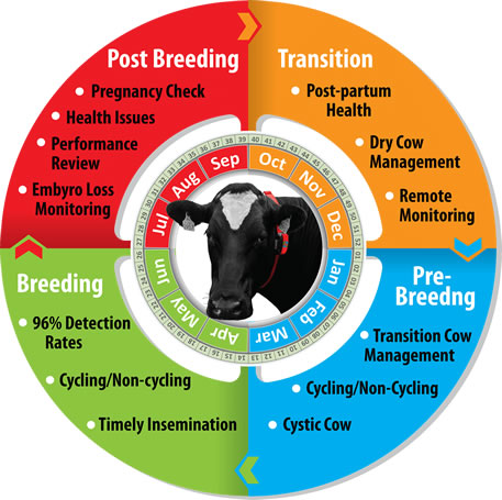 HerdInsights, Herd Breeding Technology
