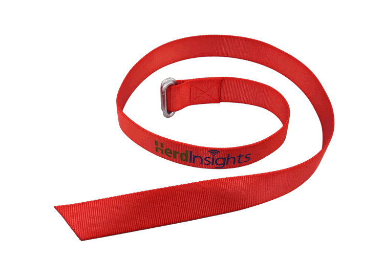 Herdinsights Collar | Replacement web for Heat Detection Collar
